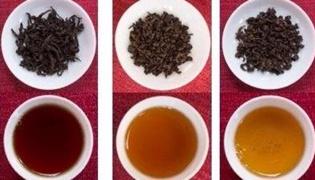 乌龙茶的种类有哪些