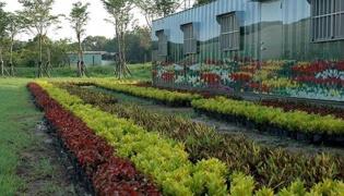 开垦土壤:生物密集型苗圃