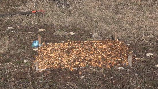 开垦土壤:碎木的使用