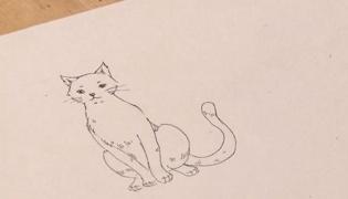 怎么画卡通猫