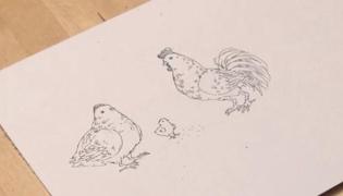 怎么画小鸡