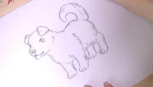 小狗怎么画