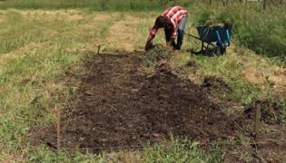 开垦土壤:苗圃建设