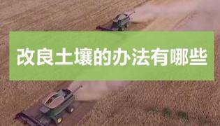 改良土壤的办法有哪些