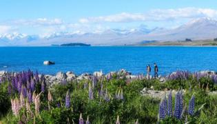 新西兰旅游最佳时间