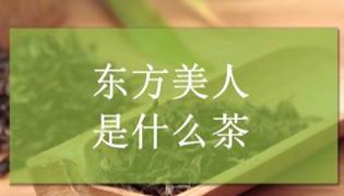 東方美人為什么叫膨風茶