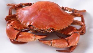 波格力蟹和青蟹的区别