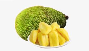 菠萝蜜放多久才熟