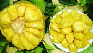菠萝蜜切开后可以存放多久