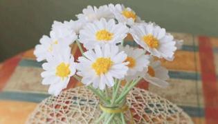 手工花朵怎么做