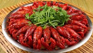 小龙虾的学名叫什么