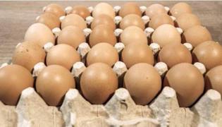 鸡蛋摆放哪一头朝下