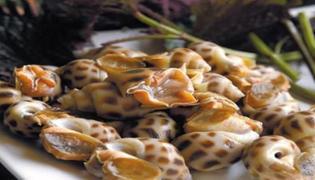 花螺属于海鲜吗