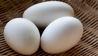 鹅蛋怎样吃有营养