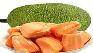 菠萝蜜黄心和红心的区别是什么