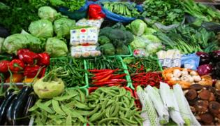 清明前后种什么蔬菜