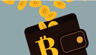 目前已推出的电子钱包有什么