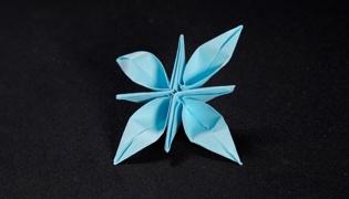 花朵的折法