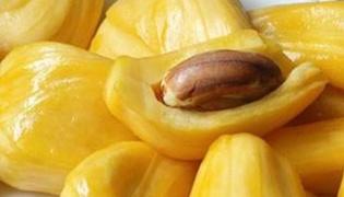 菠萝蜜核如何垃圾分类