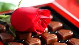 巧克力花的养殖方法