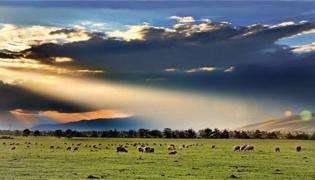那拉提草原旅游攻略