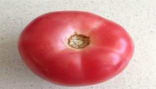 西红柿怎么切