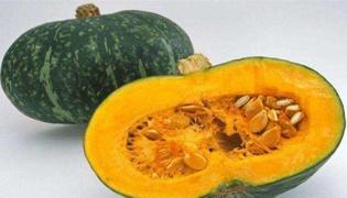 长期吃南瓜有什么害处