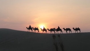 大漠孤烟直说的是哪个省