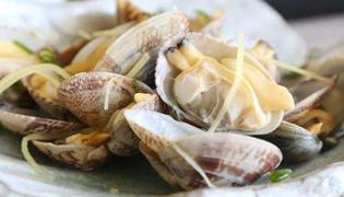 白贝和花蛤之间存在什么区别