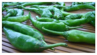 湖南泡椒的腌制方法是什么