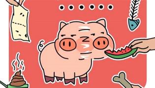 垃圾分类口诀猪怎么理解