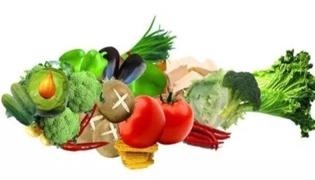 白露可以种什么蔬菜