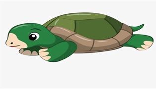 乌龟有耳朵吗 能听见声音吗