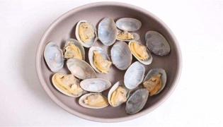 贝壳一般是干垃圾还是湿垃圾