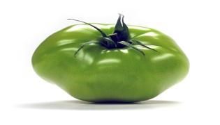 绿色的西红柿能不能吃