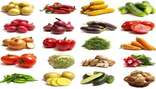 蔬菜的种植技术和方法