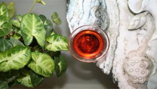 什么人適合喝普洱紅茶