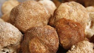 干猴头菇包饺子怎么做