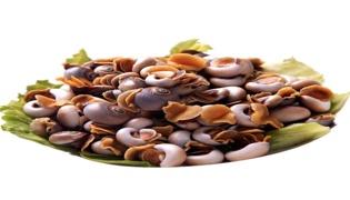 香螺的营养价值及功效