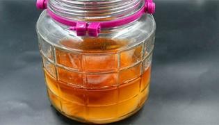 怎么判断红茶菌死了