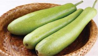 蒲瓜的禁忌有什么