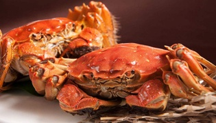 蟹的功效与作用是什么