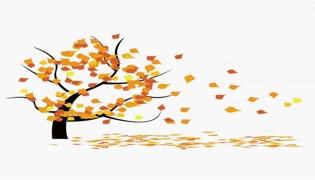 秋至是几月几日
