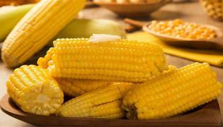 煮玉米窍门是什么