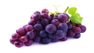 玻璃脆是指葡萄还是提子