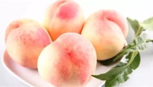 西王母的桃是什么品种