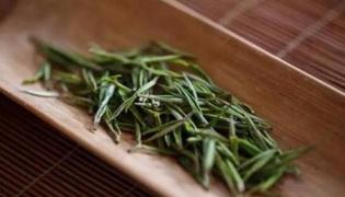 什么是安吉白茶