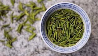 君山銀針是什么茶