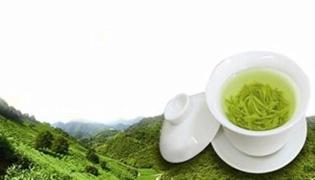 雪水云绿是什么茶