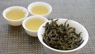 凤凰单枞是什么茶